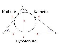 MathProf - Sinus Cosinus Tangens - Sin Cos Tan - Hypotenuse - Ankathete - Katheten - Gegenkathete - Darstellen - Plotten - Graph - Rechner - Berechnen - Grafik - Zeichnen